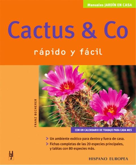 CACTUS y CO . RAPIDO Y FACIL