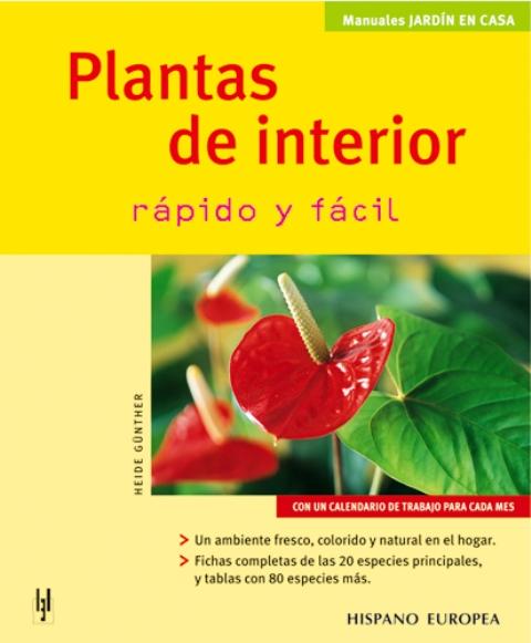 PLANTAS DE INTERIOR . RAPIDO Y FACIL