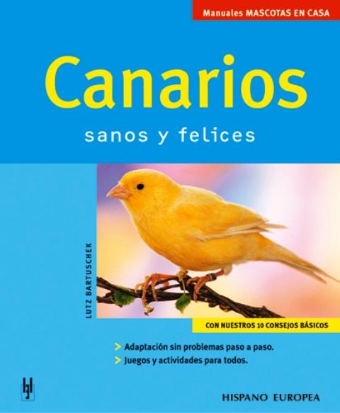 CANARIOS . SANOS Y FELICES