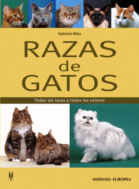 RAZAS DE GATOS . TODAS LAS RAZAS Y TODOS LOS COLORES