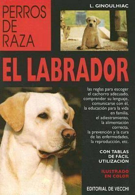 EL LABRADOR - PERROS DE RAZA