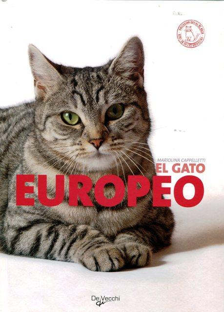 EL GATO EUROPEO