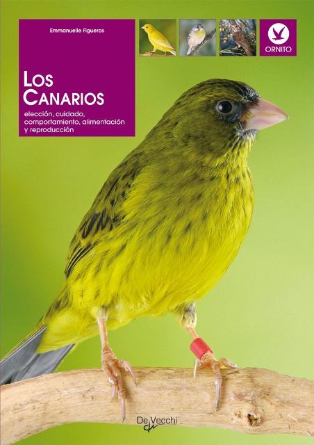 LOS CANARIOS . ELECCION , CUIDADO , COMPORTAMIENTO , ALIMENTACION Y REPRODUCCION