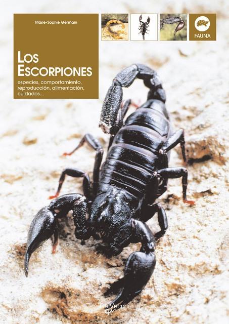 LOS ESCORPIONES . ESPECIES, COMPORTAMIENTO, REPRODUCCION, ALIMENTACION