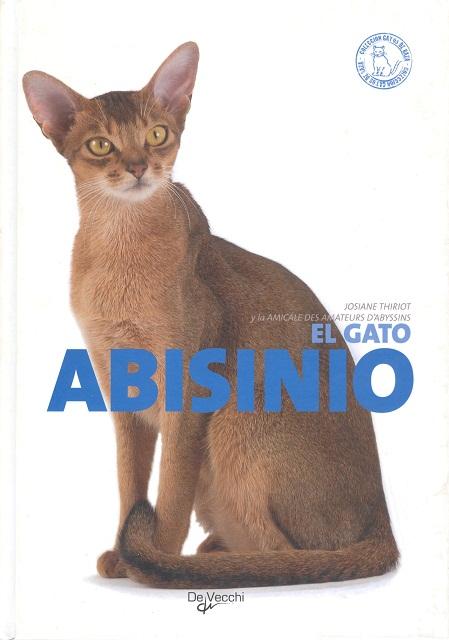ABISINIO EL GATO