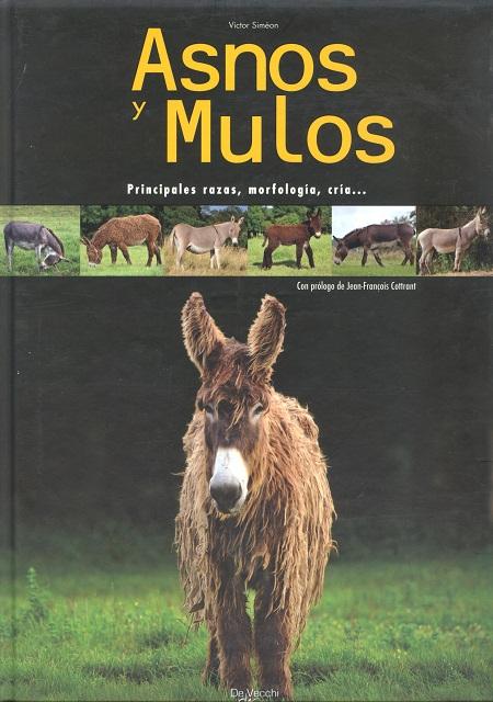 ASNOS Y MULOS