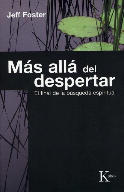 MAS ALLA DEL DESPERTAR . EL FINAL DE LA BUSQUEDA ESPIRITUAL