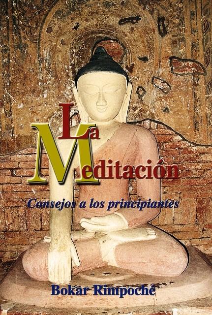 LA MEDITACION (DHA)