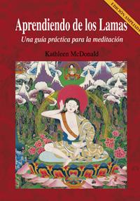 APRENDIENDO DE LOS LAMAS (N.E). UNA GUIA PRACTICA PARA MEDITACION