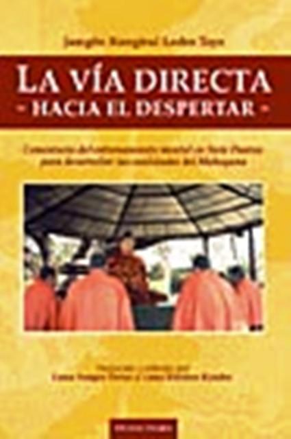 LA VIA DIRECTA HACIA EL DESPERTAR