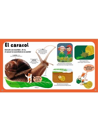 LOS ANIMALES - JUEGA Y APRENDE